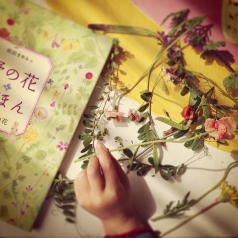 野花 イメージ画像