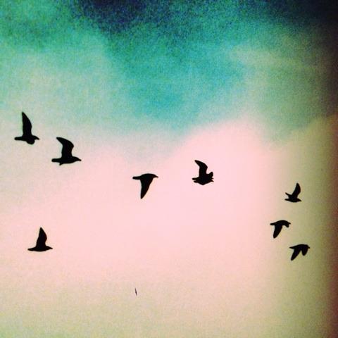 飛ぶ イメージ画像