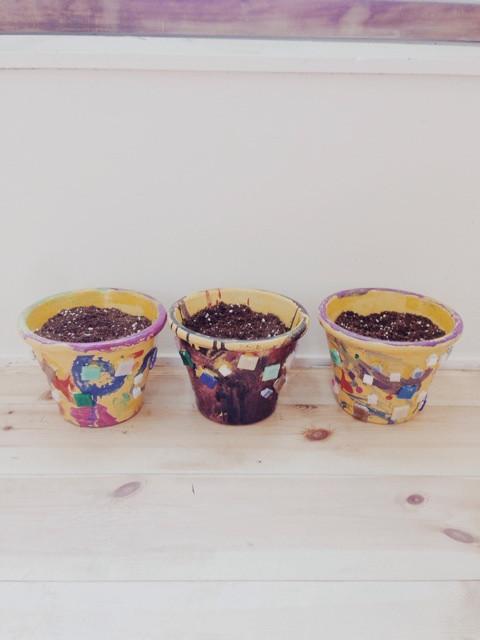 カラフル植木鉢 イメージ画像